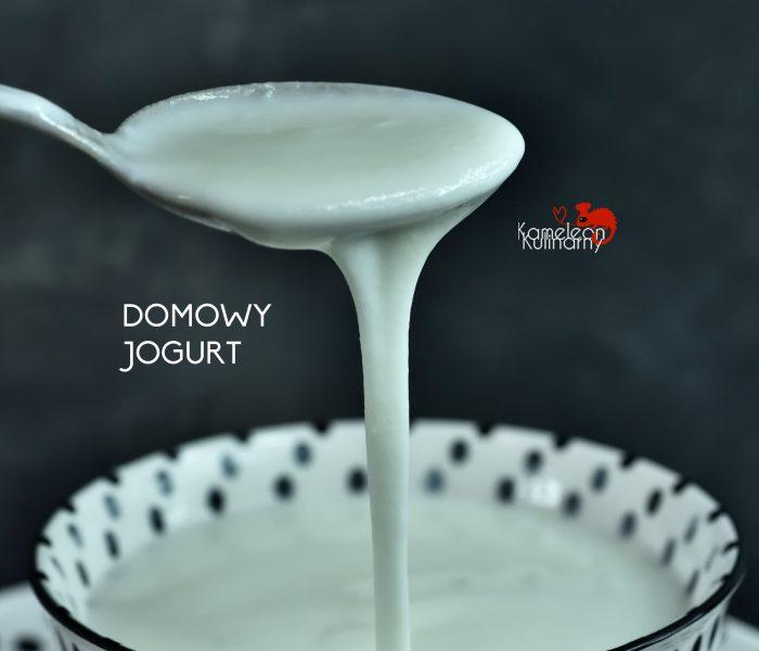 SEROJOGURTOWNICA Biowin i domowy jogurt