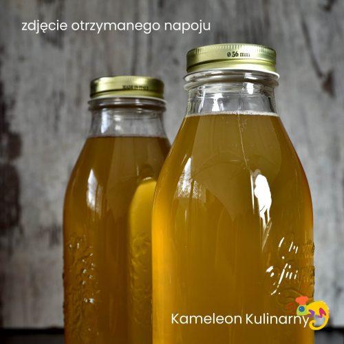 KOMBUCHA (napój)