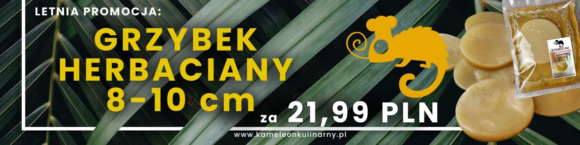 KK_letnia_promocja kopia
